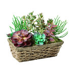 Jane Seymour Botanicals - Succulent Window Box in Straw Planter - Succulents might be considered relatively low maintenance in the gardening community, but this permanent succulent arrangement is 100 percent maintenance-free. Just place the straw planter box anyplace that could use an uplifting splash of color.