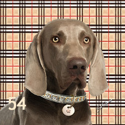 POPPA ARTZEE - Weimaraner Dog Pillow - Adorable dog paintings silk screened onto Pillows with vibrantly colored backgrounds.  These playful paintings are created by Scottsdale artist, Sal Romano.  Pillow Cover fabric is a durable finely woven washable polyester canvas with animal image on one side and solid black back with zipper and black piping all around.  Pillow insert is filled with polyester cluster fiber.