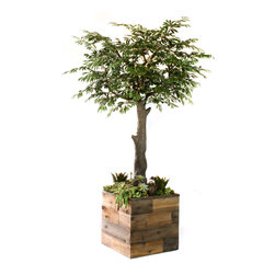 Dalmarko Designs - 8' Faux Olive Tree and Succulent Garden - Shown is an 8' Olive Tree with a straight trunk and succulent garden, in reclaimed wood styled planter.