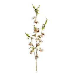 Silk Plants Direct - Silk Plants Direct Cherry Blossom (Pack of 12) - Pack of 12. Silk Plants Direct specializes in manufacturing, design and supply of the most life-like, premium quality artificial plants, trees, flowers, arrangements, topiaries and containers for home, office and commercial use. Our Cherry Blossom includes the following: