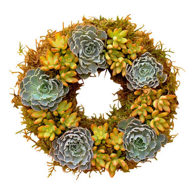 """Flora Pacifica - Rosea Succulent Wreath - This wreath features the Echeveria Rosea which has beautiful ruffled leaves and is surrounded by Sedum Nausbaumeranium.  It is approximately 12"""" in diameter and contains 30 succulent plants."""