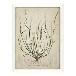 The Artwork Factory - Botanical IV Framed Artwork - Ready-to-Hang, 100% Made in the USA, museum quality framed artwork