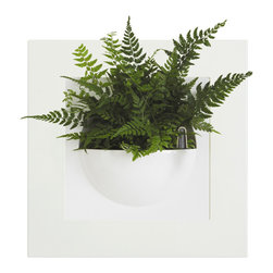 Green Gallery Single Planter - The Green Gallery Single Wall Planter is great for decorating any room. Each unit comes with both white and lime green frames and has a 4 inch deep bowl that is perfect for small plants and herbs. The bowl features a double bottom reservoir and fill tube.