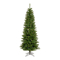 """Vickerman - Salem Pencil Pine DuraLt 200M (5.5' x 28"""") - 5.5' x 28"""" Salem Pencil Pine Tree 343 PVC tips & 200 Dura-Lit 6-Color Multi Lights, in metal stand. Dura-lit Lights utilize microchips in each socket so bulbs stay lit even when some bulbs are broken or missing."""