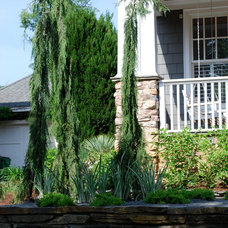 Eclectic  by Jay Sifford Garden Design