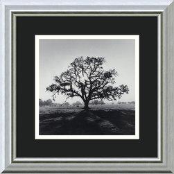 None - Ansel Adams 'Oak Tree,Sunrise,Northern California,1966' Framed Art Print - Artist: Ansel AdamsTitle: Oak Tree,Sunrise,Northern California,1966Product type: Framed print