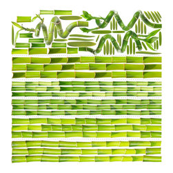 Walls Need Love - Bamboo Garden , Adhesive Wall Decal - With 5 shoots broken in to thirds you can build 5 floor to ceiling or 15 smaller shoots, mix and match with lucky bamboo tops and an assortment of leaves.