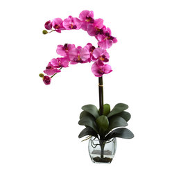 Nearly Natural - Nearly Natural Double Phal Orchid with Vase Arrangement in Mauve - With it's delicate blooms softly reaching out, seemingly begging for a touch, the Orchid has been mesmerizing plant lovers for centuries. And this double Phal Orchid offers twice the beauty. With it's lovely silk blooms, sturdy stalks, and bed of cascading green, this offering is unmatched in beauty. Complete with a decorative vase with Liquid Illusion faux water and river rock. Ideal for a desk, counter, table, or anywhere else some delicate beauty is called for.