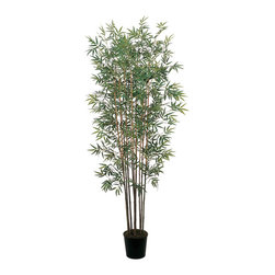Nearly Natural - 6' Mini Bamboo Silk Tree - Hmm, decisions, decisions…home or office?  Where should you place this 6' Mini Bamboo Silk Tree?  It doesn't matter; wherever it is, you'll never get tired of looking at the 10 bamboo canes topped with a whopping 2,520 leaves.  Display this artificial tree in the black plastic pot with moss that it comes in, or add your own decorative touch by slipping it into a basket or decorative pot.
