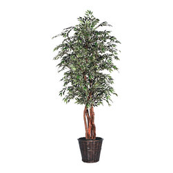 Vickerman - 6' Variegated Smilax Executive - 6' Smilax Variegated Executive Tree with three or more Dragonwood trunks, dark brown rattan basket and American made excelsior