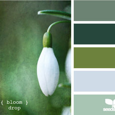 Design Seeds®: For All Who Love Color | Search