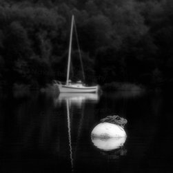"""Mooring Buoy And Sailboat, 2013"" Artwork - Title: mooring buoy and sailboat, 2013 image size: 16 x 20 inches / print only / limited edition of 50. printed without a border. this is a black and white archival pigment print made on premium quality fine art paper with a matte finish. comes signed, dated, and numbered on the back with coa. ships flat via usps priority and is carefully packaged for safe delivery."