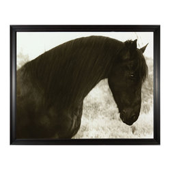 Peaceful Horse Photo Wall Art, Framed