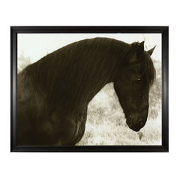 Kathy Kuo Home - Hyden Rustic Lodge Modern Peaceful Horse Photo Wall Art - Framed - Noble steed. If you're a lover of all things horses, this custom-made piece of artwork is a must-have for your collection. It captures all the grace and beauty of our elegant equine companions.