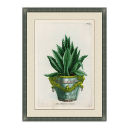 Small Planters - B Framed Giclee - A classic botanical print with antique pot lends an elegant touch to any entry way or living area. For those who love nature but need less maintenance. Adorn your walls with this luscious and exquisitely detailed and framed piece of art, uniquely beautiful and colored in hues of deep greens and gold's. Choose from six and collect your favorites from the collection.