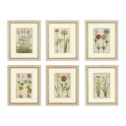 Ballard Designs - Rabel Botanical Art - Printed on fine art paper. Cream mat. Hardwood frame made by hand in the USA. Antique gray finish with inner gold trim. In 1622, French Renaissance painter and botanist, Daniel Rabel, was commissioned by the Duke Of Orleans, Henri IV's son, to paint a collection of botanical illustrations, titled Theatrum Florae. Our faithful reproductions are digitally printed to depict the original color and detail. Rabel Botanical Framed Prints features: . .  . .