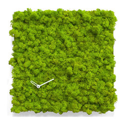 Progetti - Circle Wall Clock - A clock with a linear design but soft at the same time, revolutionary and innovative as they are completely covered in MOSS by Verde Profilo, a lichen natural that can be used indoors, even in rooms without natural light. Nature is at home with Circle Clock. Made in steel and lichen. Battery quartz movement. 2117.