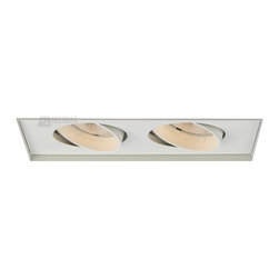 W.A.C. Lighting - W.A.C. Lighting MT-230MHTL-WT Double Light PAR Metal Halide Multi Spot Invisible - Rectangle two light gimbal ring style adjustable recessed fixture,  available with trim or Invisible Trim™, designed to sit flush with the ceiling for a clean, architectural look. Housing and trim ordered separately.