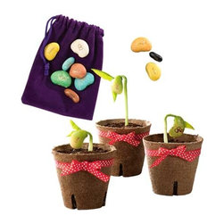 Magic Beans - We've read Jack and the Beanstalk a zillion times, and I know my kiddos would love having their own magic beans. Each bean has a sentiment stamped on it, and after being planted and watered for a few days, the bean will sprout and display its special message.
