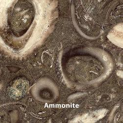 Tyvarian Color Samples - Tyvarian Ammonite