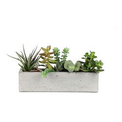 "Rough Fusion - Concrete Windowsill Planter 12"" - This geometrically modern planter is perfect for a display of succulents and adds interest to any centerpiece or table setting."