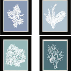 Blue Gray, Coral Art, Blue Wall Art, Blue Decor - Four 8x10 archival quality prints of antique sea corals on Blue Grey backgrounds.