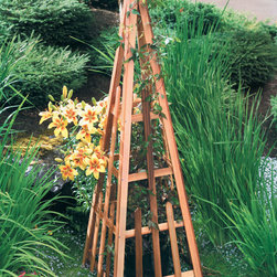 Phat Tommy - Phat Tommy Pyramid Trellis - The Phat Tommy Pyramid Trellis is a clever way to bring architectural structure and character to the garden. The trellis provides the perfect support for a range of plants,from the seasonal vegetable to the classic climbing rose.
