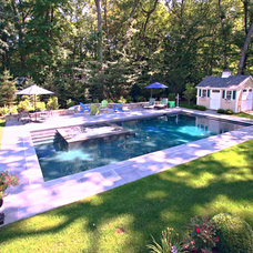 Traditional Pool by Swimm Pool & Patio