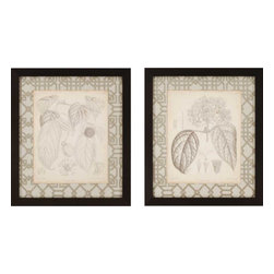 Paragon - Curtis Botanicals I PK/2 - Framed Art - Each product is custom made upon order so there might be small variations from the picture displayed. No two pieces are exactly alike.