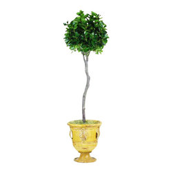 "Winward Designs - Italian Ficus Topiary In Urn Flower Arrangement - A rustic Italian-style ceramic urn holds this elegant topiary. It's the perfect ""plant"" for anyone who lacks a green thumb. The permanent ficus brings a bit of natural beauty to a home all year-round without the worry of weekly watering or regular pruning."