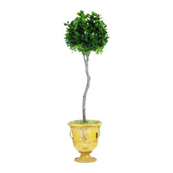 Italian Ficus Topiary In Urn Flower Arrangement