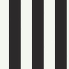 Guest Picks: Black and White Stripes