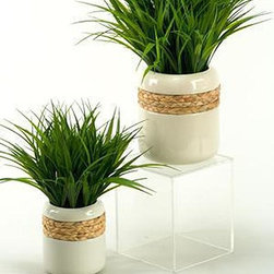 Home Decorators Collection - Wildgrass in Ceramic Planter - Sprouting from a white ceramic planter, the slim blades of our faux Wildgrass in Ceramic Planter splay out as vibrantly as real grass. The smooth, cylindrical shape of the planter rounds inward at the top to draw the eye to the greenery. A band of woven seagrass underscores the natural, beachy feel of this home accent. White ceramic planter. Planter includes a seagrass band. Lifelike faux wildgrass.