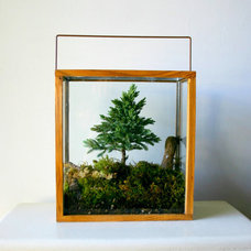 Modern Terrariums by Etsy