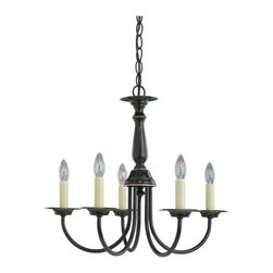 Sea Gull Lighting - Sea Gull Lighting 5-Light Traditional Chandelier X-287-6193 - Rich curves make for an appealing candelabra in this traditional chandelier. The stylish candle-like shades provide a warm radiance that looks magnificent in your bathroom, apartment, bungalow, or dining room. The finish is extremely durable and made to please. You'll always be able to enjoy the friendly sparkle. Share this fixture with friends and relatives.
