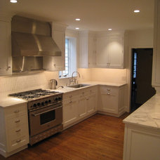 Traditional Kitchen Transistional Kitchens