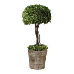 Uttermost 60095 Preserved Boxwood Tree Topiary - About UttermostThe mission of the Uttermost Company is simple: to make great home accessories at reasonable prices. This has been their objective since founding their family-owned business over 30 years ago. Uttermost manufactures mirrors art metal wall art lamps accessories clocks and lighting fixtures in its Rocky Mount Virginia factories. They provide quality furnishings throughout the world from their state-of-the-art distribution center located on the West Coast of the United States.