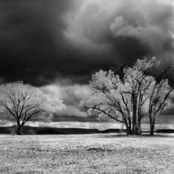 """House and Trees Red Mesa - Large-Scale, Limited Edition Photography - This 48"""" X 19"""" photograph is of an abandoned homestead in Colorado. The photographer often turns his camera on abandoned farms, crumbling homes, neglected churches and other objects set within the vastness of the southwestern landscape."""