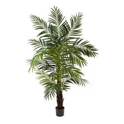 6' Areca Palm Tree - Here's one of the most realistic looking palm trees you will ever find (unless you're on a tropical beach, of course!) This stunning Areca palm tree is tall (6'), full (with 12 trunks and more than 600 leaves ready to sway in the ocean breeze), and is ready to stand proud in your home or office. The best part is you don't need a tropical environment (or even water) to keep it looking beautiful. Makes a perfect gift as well. Height= 6 Ft. x Width= 58 In. x Depth= 58 In.