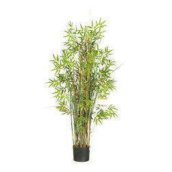 5' Bamboo Grass Silk Plant - The perfect way to express an eccentric and whimsical style, this magical grass plant surrounded by bamboo is sure to elicit a comment from all who view it. A full 5 feet high, this slender wispy plant is decorated with over seven-hundred bright finely detailed leaves. A mix of delicate bamboo stalks encompass this natural looking plant, extending gracefully between lush green foliage. Fits nicely beside an office desk or display it proudly in a home foyer to greet guests. Height= 5 ft x Width= 35 in x Depth= 35 in
