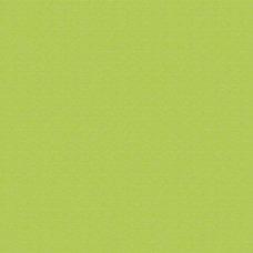 Sunbrella Macaw - FabricGallery