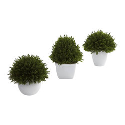 Nearly Natural - Mixed Cedar Topiary Collection (Set of 3) - Sometimes a subtle, accent decoration fits the bill. That's exactly what these mixed cedar topiaries provide. They are small (between 5.5 and 6.5'), delicate looking (with beautiful, almost 'fluffy' faux cedar), and come in a lovely little planter. Plus this is a set of three, so you can display them in multiple places (or keep some for yourself and give the rest as a gift.)