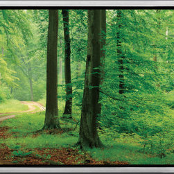 "Elementem - A Walk In The Woods Framed Print - With its vibrant hues of green, and brown, A Walk in the Woods literally puts you in the middle of the forest.  Adding to the colors, the path beckons you into the scene, creating a piece that can only be called an ""experience"".  Printed on vinyl, laminated, and mounted onto MDF, the print comes already attached to an exquisite frame, and takes minutes to hang."