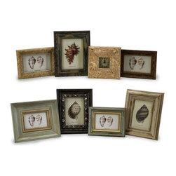 Seaside Frames - Assorted Set of 8 - Assorted set of eight framed seaside shell studies.