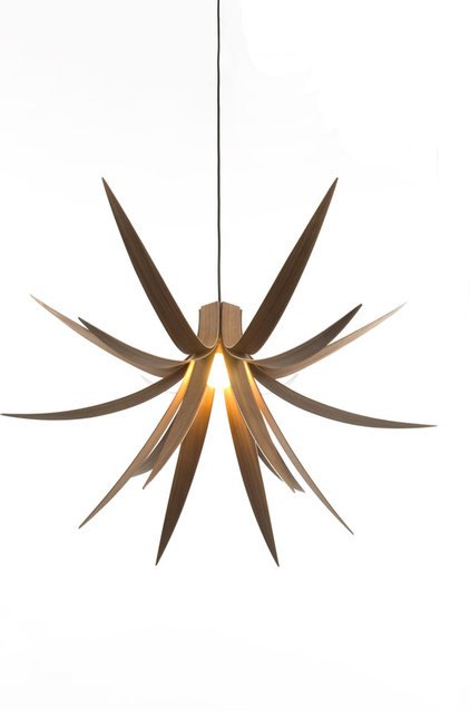 Contemporary Pendant Lighting by MacMaster