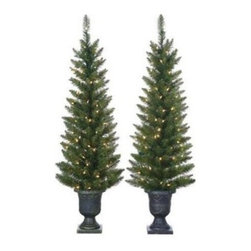 4 ft. Cedar Pine Pre-Lit Potted Christmas Tree - Set of 2 - You aren't seeing double - the 4 ft. Cedar Pine Pre-Lit Potted Christmas Tree - Set of 2 is really twice as nice. These elegant pines in sophisticated pots make a statement together, or spread the joy when apart. With warm clear lights already attached, you can skip the detangling, stretching and arranging; pre-lit means the lights are placed and spaced just right. Set this pair by your front entry or in a dining room, or anywhere you want to transform an area into Christmas heaven.Additional InformationShape: slimBase width: 16 in.Bulb count: 100Tip count: 157About Sterling's ForestSterling's Forest is in integral part of Sterling, Inc. Sterling, Inc. is known in the industry as one great source for holiday decorations, offering realistic holiday foliage, a full line of display trees, decorations, and more. Sterling's Forest is a full line of lifelike Christmas trees, wreaths, and garlands as well as one of the industry's most extensive assortments of pre-lit Christmas trees.
