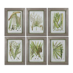 Uttermost - Grace Feyock Palm Seeds Frame Wall Art Set of 6 X-51514 - Champagne silver leaf frames with medium green inner lips with a brown and gray wash. Prints are under glass.