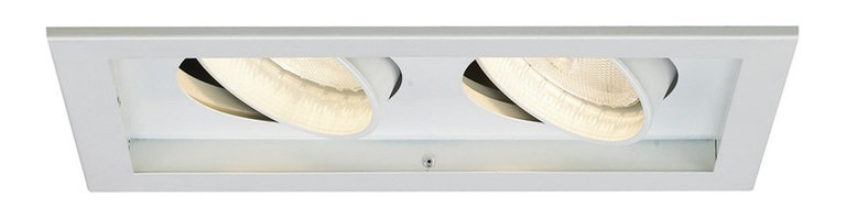 WAC Lighting - MT-230 2-lt PAR30 Multiple Spot Trim, Mt-230-Wt/Wt - MT-230 2-lt PAR30 Multiple Spot Trim