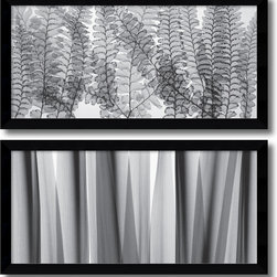 Amanti Art - Steven N. Meyers 'Maidenhair Ferns & Yucca Leaves- set of 2' Framed Art Print 40 - With delicate leaf forms and overlapping silhouettes Steven N. Meyers gives us a new way to appreciate the botanical structure and shapes of the natural world.