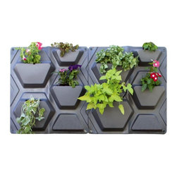 Palram - Palram PlantScape Hex Vertical Garden - HG2106 - Shop for Greenhouses from Hayneedle.com! Modern and beautiful the Palram PlantScape Hex Vertical Garden allows you to create a colorful living piece of art in your own backyard. This gorgeous Greenwall features modular panels that give you separate potting cells so you can choose how to intersperse your favorite flowers and plants. UV protected for durability each unit has a separate back panel to help protect your walls. An internal drip irrigation system keeps your plants well-watered and thriving while the design allows you to add more units so you can create a wall as large or small as you'd like. Additional Features Modern hexagonal design Includes an internal drip irrigation system Designed to allow you to add more units Includes 2 units per package